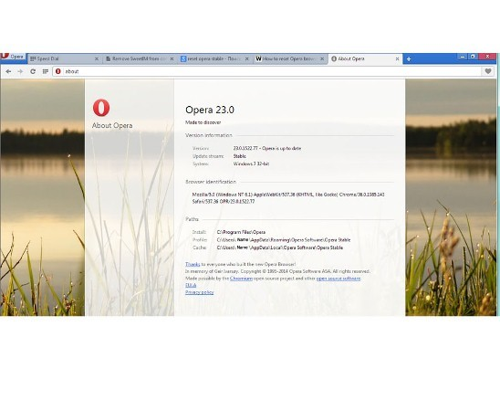 Open about to remove TuneUp Pro in Opera