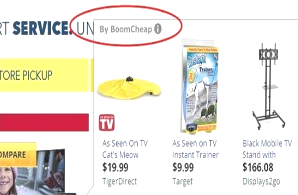 You can remove BoomCheap from your computer