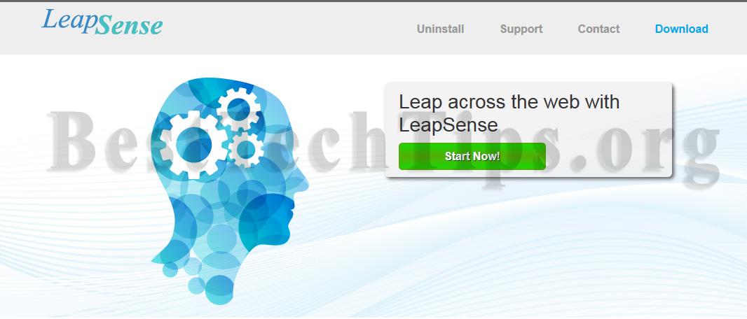 Get rid of LeapSense