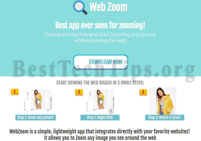 Get rid of Web Zoom