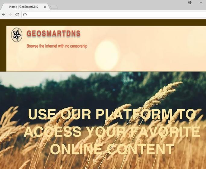 remove GeoSmartDNS ads