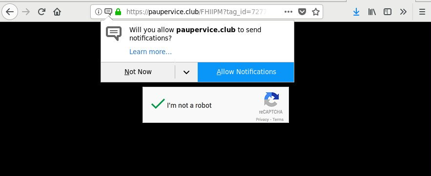 How to remove Paupervice.club redirect