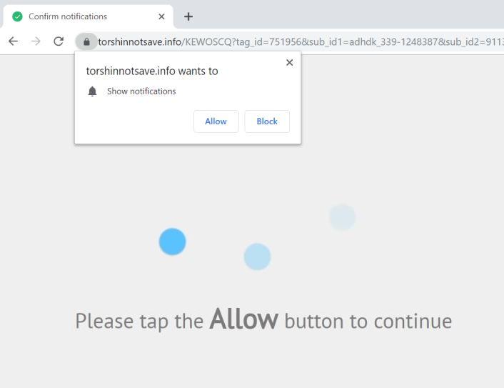 remove Torshinnotsave.info