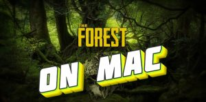 the-forest-for-mac-main
